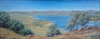 Lake Hume  ( oil - 40 x 90cm )